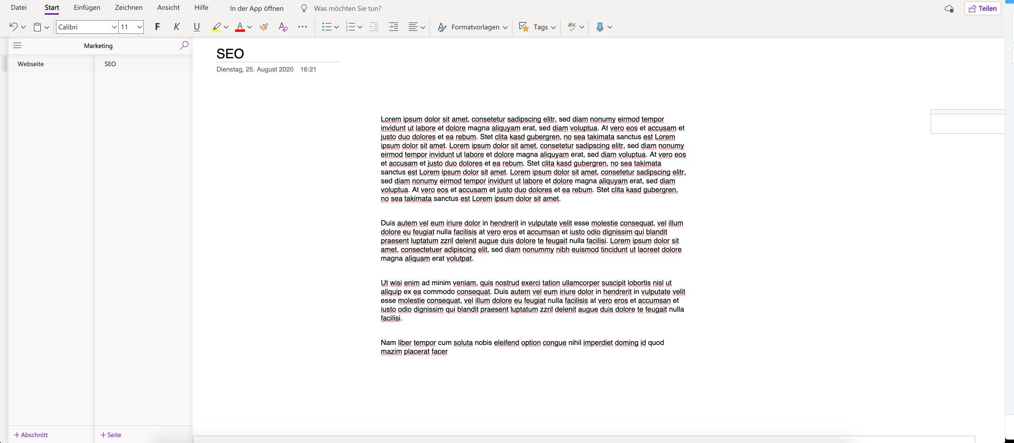 Ein Screenshot des Tools Microsoft OneNote